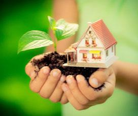 Eco & Reusable