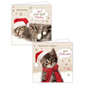 Kitten Design Christmas Cards