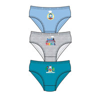 Official Boys Thomas Briefs 3 Pack