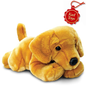 Cuddly Labrador