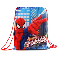 Official Ultimate Spiderman Shoe Bag