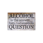 Alcohol is the Answer Message Plaque