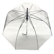 Thin White/Black Border Clear Umbrella