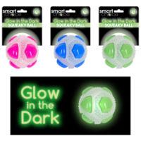 Glow In The Dark Ball Dog Toy