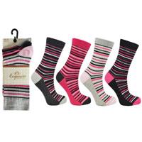 Ladies 3 Pack Exquisite Stripe Socks