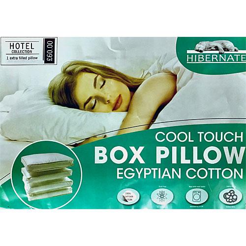 Hotel Quality Box Pillow