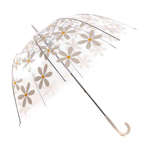 Dome Umbrella Daisy