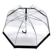 Wide Black Border Clear Umbrella