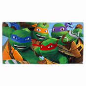 Teenage Mutant Ninja Turtles Beach Towel Carton Price