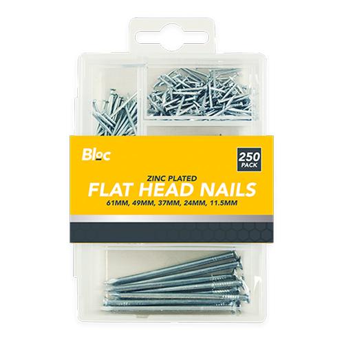 Assorted Flat Head Nails