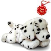 Cuddly Dalmatian