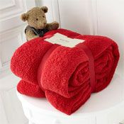 Luxurious Super Soft Teddy Throw Red