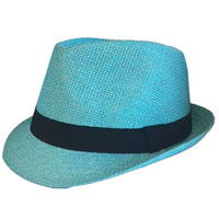 Light Blue Trilby Hat With Black Band