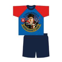 Boys Older Official Harry Potter Shortie Pyjamas