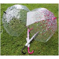 Ladies Spotty Print Clear Dome Umbrella