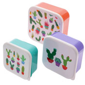 Stacking Lunch Boxes Lauren Cactus