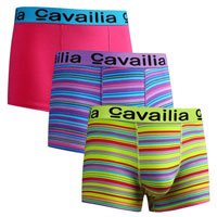 Mens Cavailia Hipster Stretch Boxers Assorted