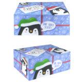 Christmas Eve Parcel Box Penguin