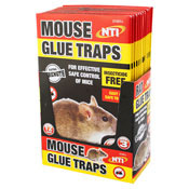 Mouse Glue Traps 3 Pack