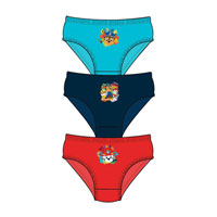 Official Boys Paw Patrol Briefs 3 Pack