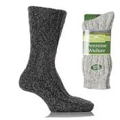 Pennine Walker socks 6-11
